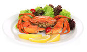 Boiled crab on white plate with salad leaves and tomatoes, isolated on white — Stock Photo