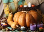 Autumn still life with pumpkins on fabric background — Stock Photo