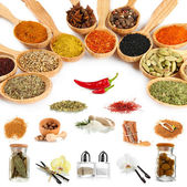 Various spices and herbs isolated on white — Stock Photo