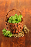 Fresh green hops in wicker basket and barley, on wooden background — Stock Photo