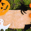 Old paper with Halloween decorations on green moss background — Stock Photo #33181273