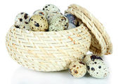 Quail eggs in wicker basket isolated on white — Stock Photo