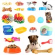 Collage of pets and different stuff for them — Stock Photo #33314155