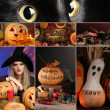 Halloween collage — Stock Photo