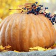 Pumpkin and autumn leaves, on yellow background — Stock Photo #33314287