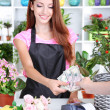 Beautiful girl florist with flowers in flowers shop  — Стоковая фотография
