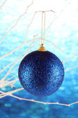 Christmas toy hanging on branch on blue background — Photo