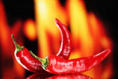 Red hot chili peppers on fire background — ストック写真