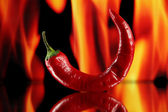 Red hot chili peppers on fire background — Photo