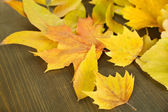 Bright autumn leafs on wooden table — Stock Photo