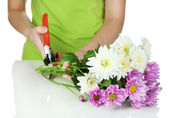 Florist shears cuts flowers isolated on white — Stock Photo