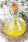 Oliwy z oliwek i gałęzi na worze z bliska — Zdjęcie stockowe