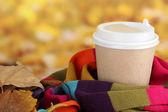 Gorący napój w kubek papierowy z kolor szalik i żółte liście na jasnym tle — Zdjęcie stockowe