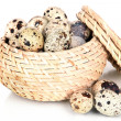 Quail eggs in wicker basket isolated on white — Stock Photo #33455369