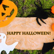 Old paper with Halloween decorations on green moss background — Stock Photo