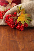 Red berries of viburnum on sackcloth napkin, on wooden background — Stock Photo