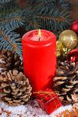 Juldekoration med tall kottar närbild — Stockfoto