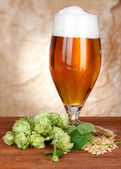 Glass of beer and hops, on wooden table — Photo