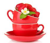 白で隔離され、赤カップで熟した甘いイチゴ — ストック写真