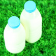 Milk in bottles on grass — Stock Photo