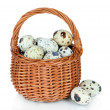 Quail eggs in wicker basket isolated on white — Stock Photo #33664519