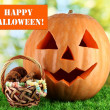 Halloween pumpkin on grass on bright background — Stok fotoğraf
