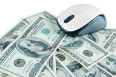 Computer mouse on dollars close up — Стоковое фото