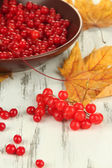 Red berries of viburnum in bowl and yellow leaves on wooden background — ストック写真