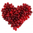 Stock Photo: Ripe red cranberries, isolated on whit