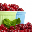 Stock Photo: Ripe red cranberries in bowls, isolated on whit
