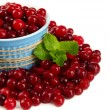 Stock Photo: Ripe red cranberries in bowl, isolated on whit