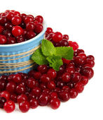 Ripe red cranberries in bowl, isolated on whit — ストック写真
