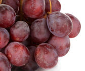Ripe delicious grapes isolated on white — Stock Photo