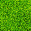 Green carpet texture — Stockfoto