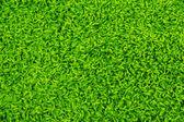Textura de la alfombra verde — Foto de Stock