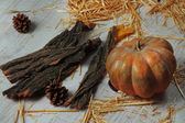 Pumpkin with bark and bumps on wooden background — Photo
