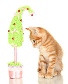 Cute little red kitten with handmade Christmas tree isolated on white — Stock Photo