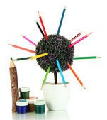 Decorative tree with colorful pencils in pot isolated on white — ストック写真