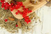 Red berries of viburnum on stand with hay and bumps on wooden background — Photo