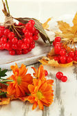 Red berries of viburnum with yellow leaves and flowers on wooden background — Stock Photo