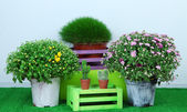 Flowers in pots with boxes on grass on grey background — Stock Photo