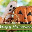 Halloween pumpkins on grass on bright background — Stok fotoğraf