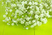Beautiful gypsophila flowers on wooden background — Stock Photo