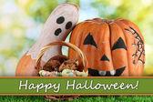 Halloween pumpkins on grass on bright background — Stock Photo