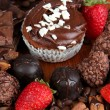 Tasty cupcake with different sweets close up — Stockfoto