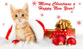 Cute little red kitten in Santa hat isolated on white — Stock Photo