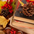 Books and autumn leaves on wooden table close-up — Stockfoto