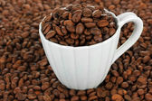 Koffie bonen in cup close-up — Stockfoto