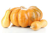 Ripe pumpkins isolated on white — Stock Photo