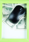 Computer mouse on dollars with frame close up — Foto de Stock